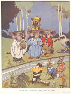 Blinky Bill frontispiece